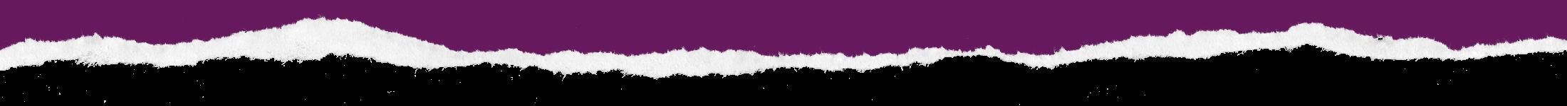 PaperRip Top Purple1